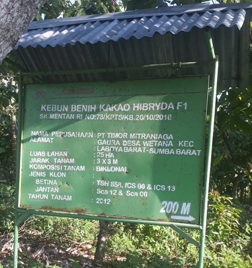 http://kakao-indonesia.com/images/stories/pt%20timor%20niaga.jpg